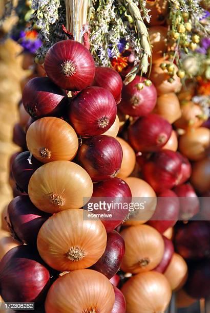 Onion plait