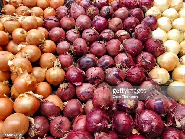 onions for sale at supermarket in usa - spanish onion stock pictures, royalty-free photos & images