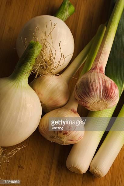 Cebola, alho francês & Garlics Vt