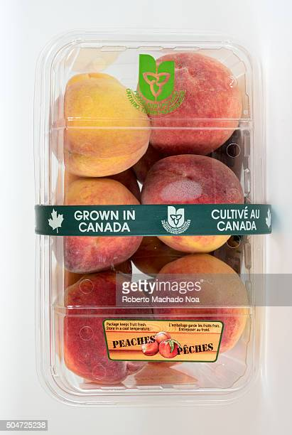 Ontario peaches fruit Peaches grown in Canada with packaging and labels for sale