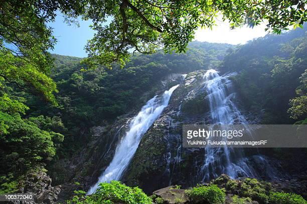 ookawa-no-taki (waterfall), yakushima island, kagoshima prefecture, kyushu, japan - 鹿児島県 ストックフォトと画像