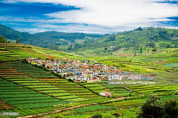 Ooty Valley after the rain