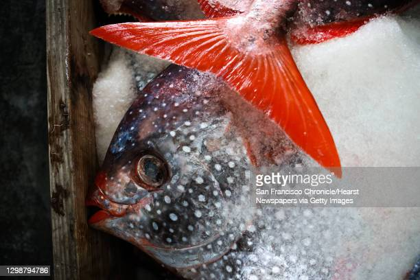 Opah fish sit on ice in cartons at Fisherman's Wharf, in San Francisco, California on Monday, January 4, 2016. They are being sourced by fisherman...