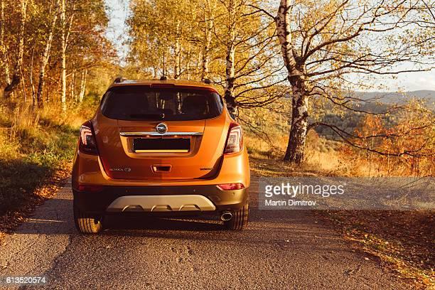 Opel Mokka X parked in the autumn park