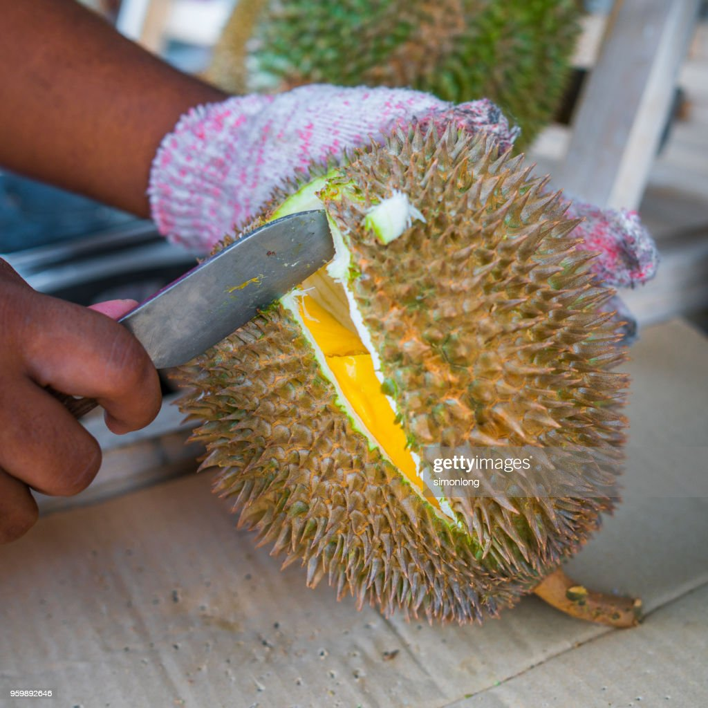 Open a Durian : Stock-Foto