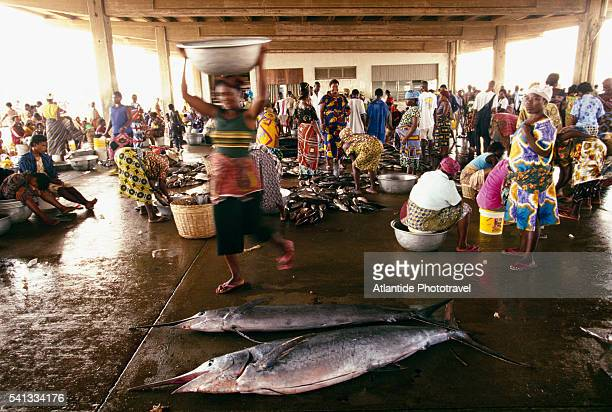 open air fish market - togo fotografías e imágenes de stock