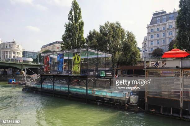 open air swimming pool on the riverbank of duna canal in vienna. - emreturanphoto stock pictures, royalty-free photos & images