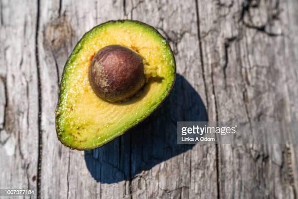 Open Avocado Sitting on Tree Bark