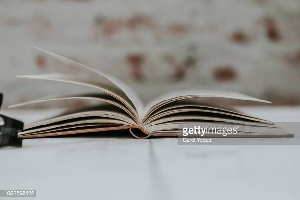 open  book - history stock pictures, royalty-free photos & images