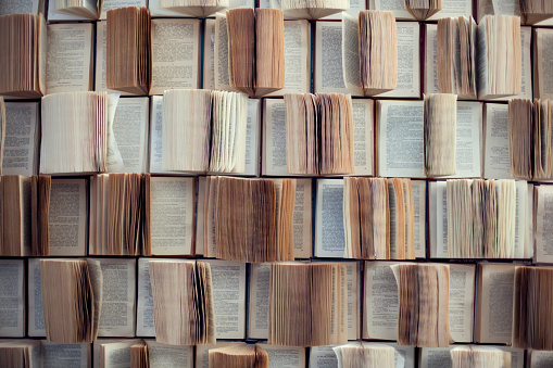 Open books, Abstract blur and defocused bookshelf in library interior for background 882141558