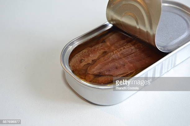 Open can of anchovies