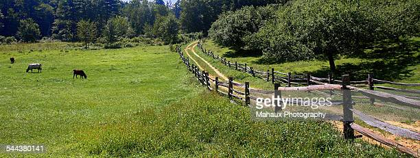 open country and peacefull - sturbridge stock photos and pictures