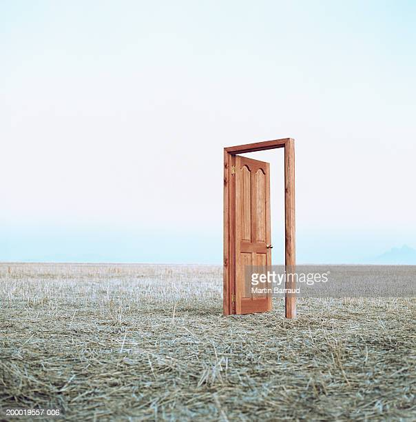 open door in field - deur stockfoto's en -beelden