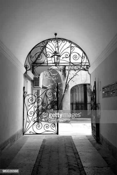 open door - foresi stock pictures, royalty-free photos & images
