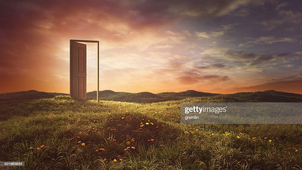 Open doors on the summer meadow : Stock Photo
