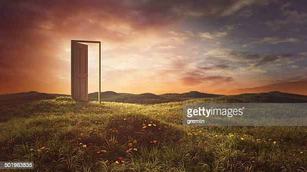 open doors on the summer meadow - deur stockfoto's en -beelden