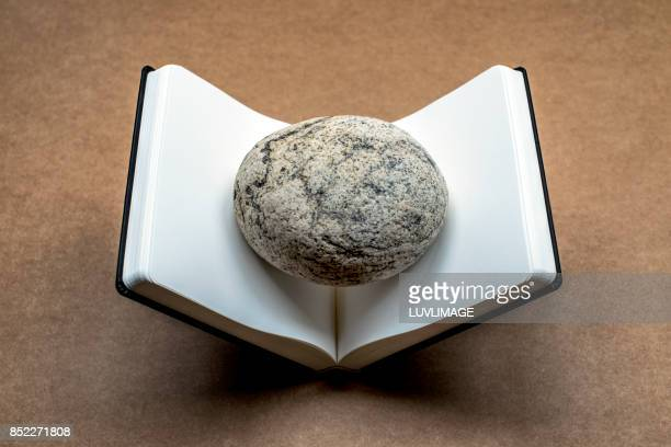 Open dummy book with a rock in the middle.