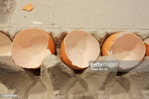 open eggshells in eggs tray - rafael ben ari stock pictures, royalty-free photos & images