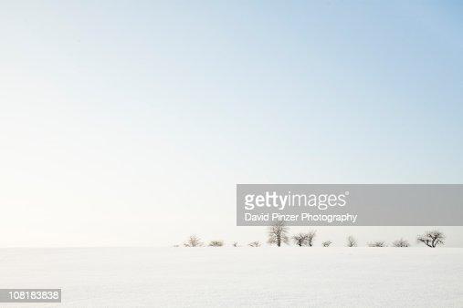 Open fields of snow