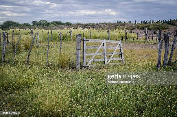 open gate in a patagonic field - radicella stock photos and pictures
