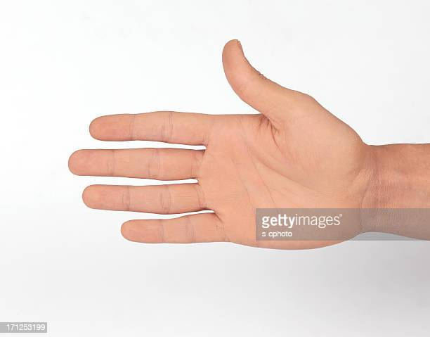 open hand (click for more) - palm stock photos and pictures