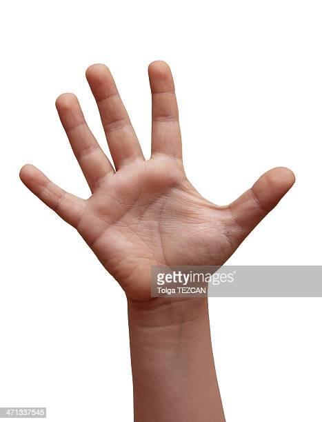 Mão aberta (isolado