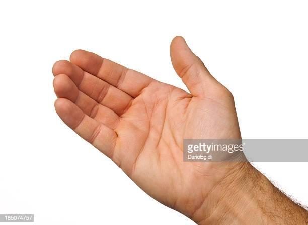 Masculino mão aberta pronta para a levar algo sobre fundo branco