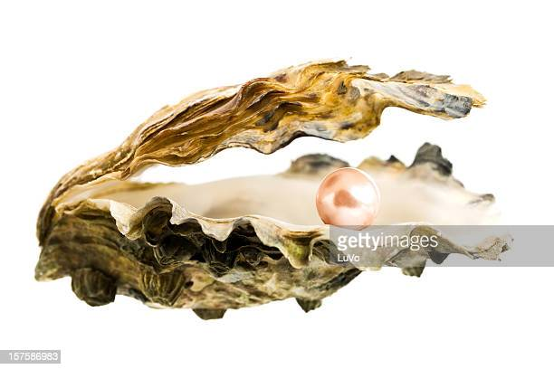 Open oyster shell with a large, pink pearl inside