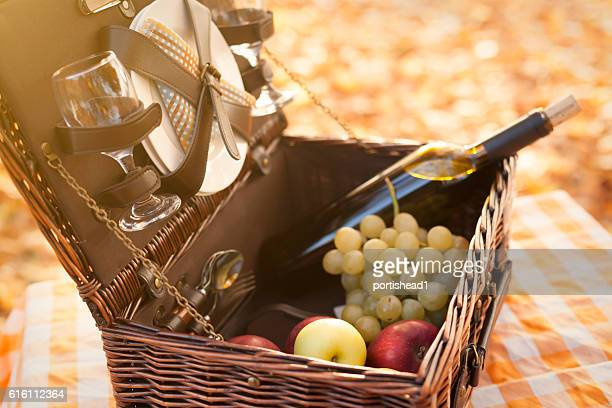 Open picnic basket