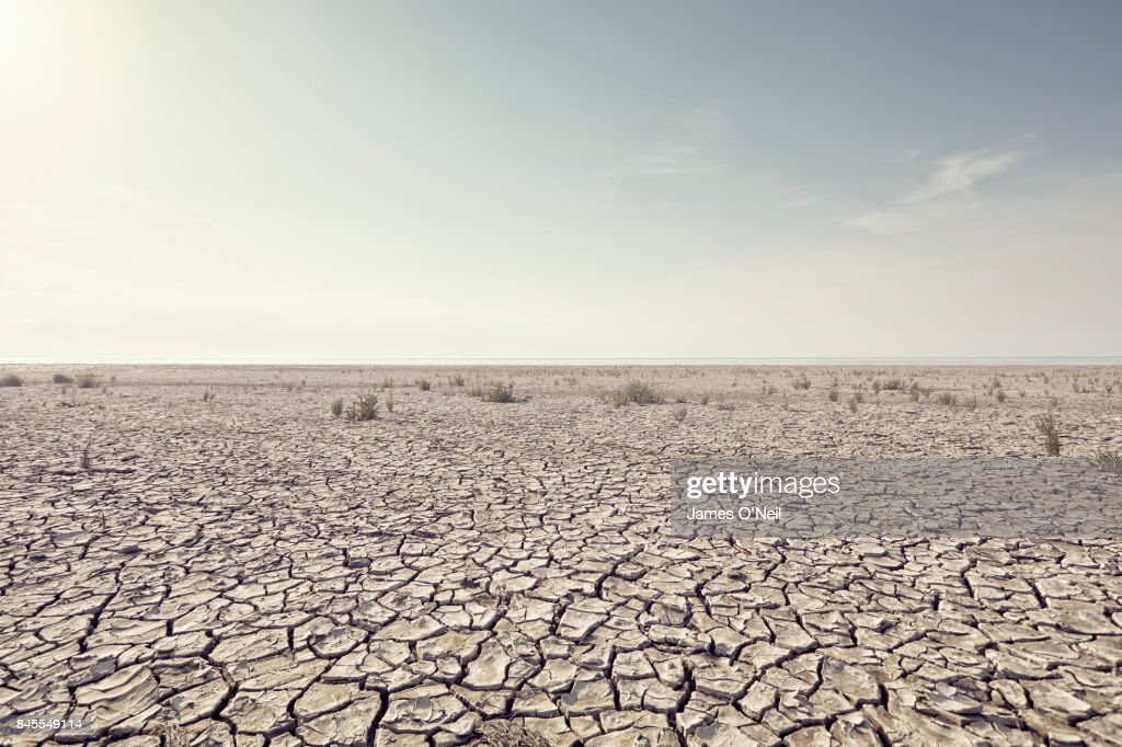 Open plain with cracked mud and clear sky : Stock Photo