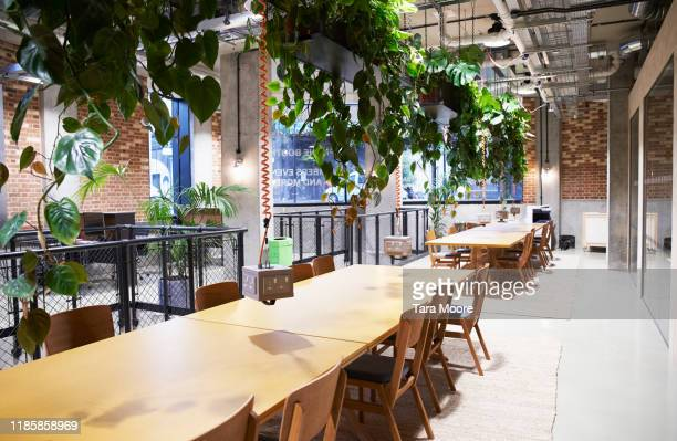 open plan office used for hot desking - office stock pictures, royalty-free photos & images