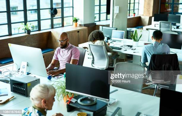open plan office with people working at desks - lavoratori dipendenti foto e immagini stock