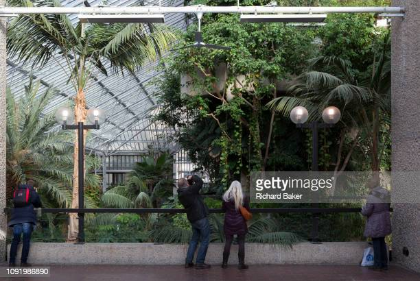 Open to the public on occasional Sundays visitors tour the Barbican Conservatory in the City of London on 27th January 2019 in London England The...