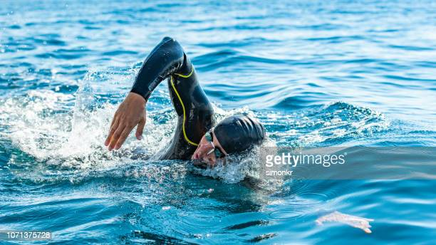 open water swimmer swimming in sea - wetsuit stock pictures, royalty-free photos & images