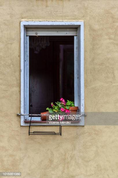 Open window and two flower pots