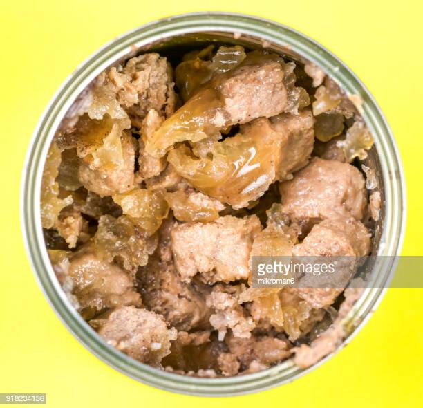 Opened can of beef dog food