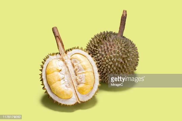 opened durian tropical fruit - durian stock pictures, royalty-free photos & images