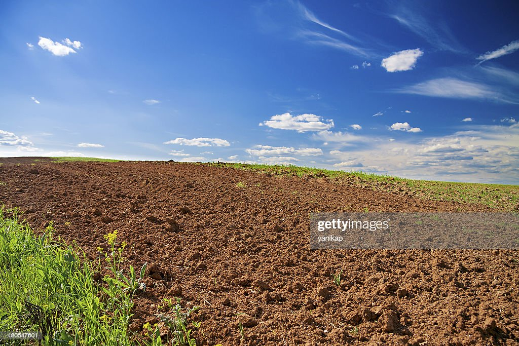 opened field in the spring for crops : Stock Photo