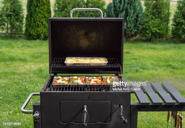 opened grill with food on trays inside, standing on the backyard garden on the lawn. - バーベキューグリル ストックフォトと画像