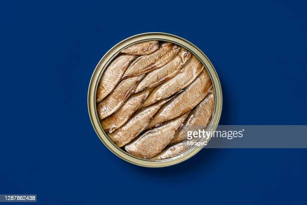 opened sardine can - tin can stock pictures, royalty-free photos & images