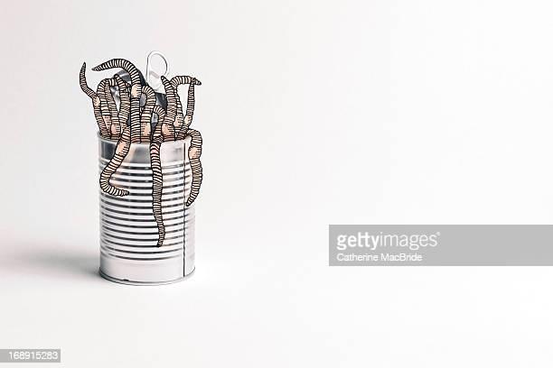 opening a can of worms - catherine macbride fotografías e imágenes de stock