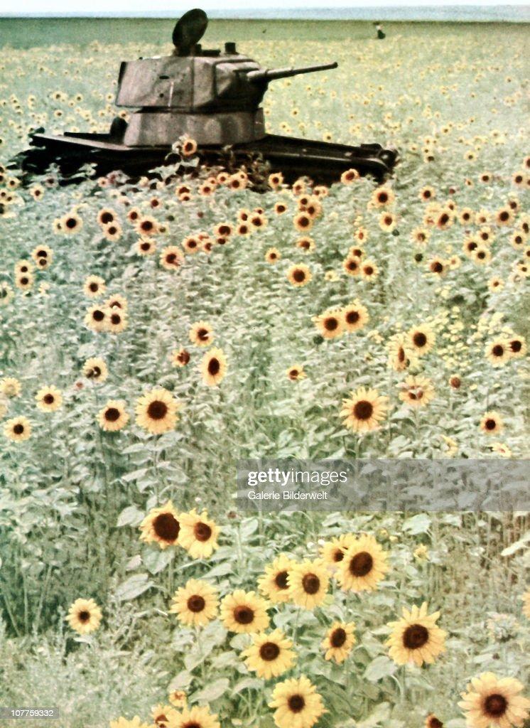 Operation Barbarossa : News Photo