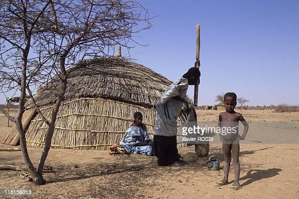 Operation of the schools of Desert in Burkina Faso in December 1993 Gountoure