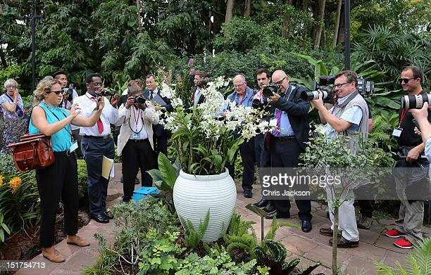 OPhotographers photograph an orchid named in honour of Diana Princess of Wales at Singapore Botanical Gardens ahead of a visit by Prince William Duke...