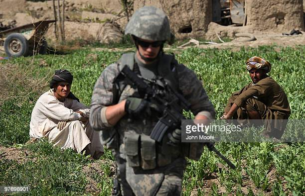Opium poppy farmers watch as an American soldier passes through their field shortly before a firefight with Taliban insurgents on March 14 2010 at...