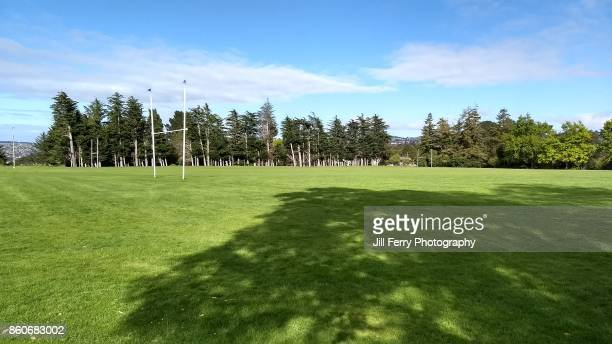 opoho park - new zealand rugby stock photos and pictures