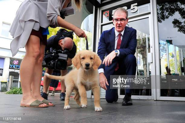 Opposition Leader Michael Daley pats a puppy after speaking to business owners on Crown Street in Surry Hills on March 21 2019 in Sydney Australia...