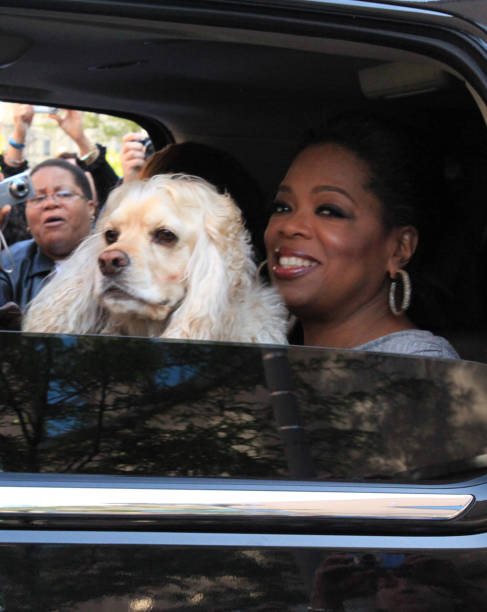 IL: 24th May 2011 - Oprah Winfrey Tapes The Last Episode of Her Show