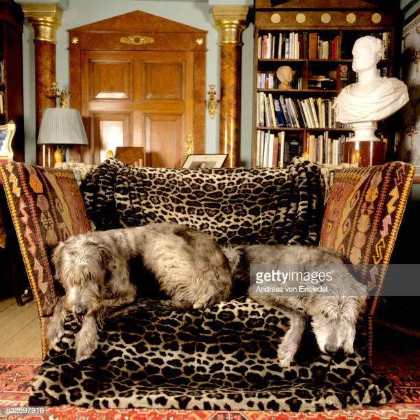 Opulent English gentleman's home