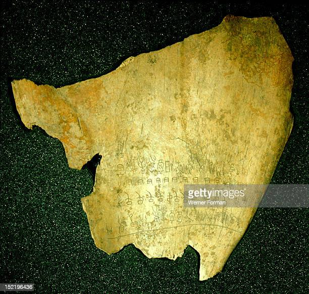 Oracle bone The engraved characters are the earliest known examples of Chinese script The bones originally used for divination also provide...
